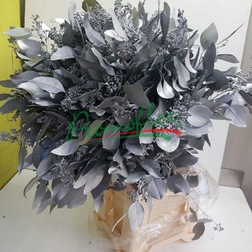 Eucalyptus Populifolia Berries Silver
