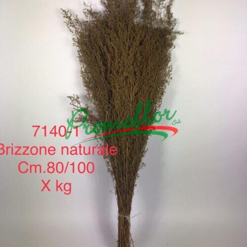 Brizzone Naturale