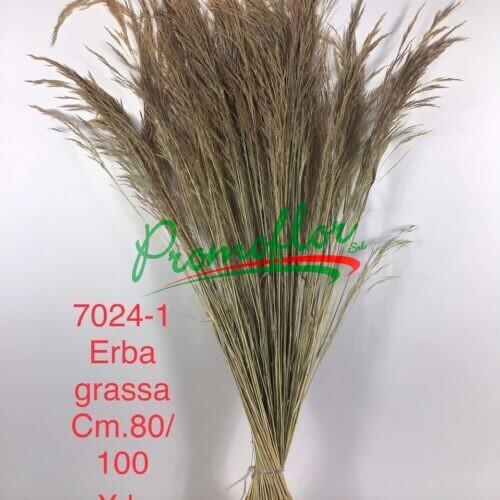 Erba Grassa Natural